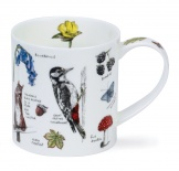 ORKNEY - Country Notebook Woodland Notebook - porcelana