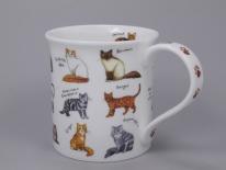 BUTE Animal Breeds Cat Breeds-porcelana