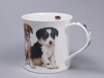 WESSEX Puppies Boxer- porcelana