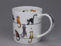 ORKNEY Live Wires Cat- porcelana