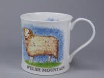 WESSEX Traditional Farm Breeds Sheep -porcelana