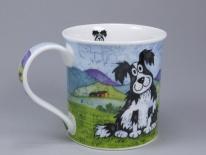 Daft Dogs Collie