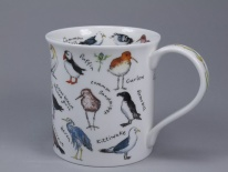 BUTE Birdlife Coastal Birds - porcelana