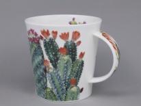 CAIRNGORM Cacti Multi -porcelana