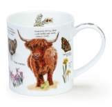 ORKNEY - Scottish Notebook Highland Cow - porcelana