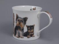 WESSEX Designer Dogs -Yorkshire Terriers -porcelana