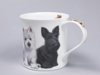 WESSEX Puppies Westie- porcelana