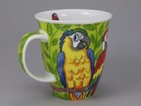 Tropical Birds Macaws