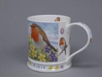 IONA Wildlife Robin -porcelana