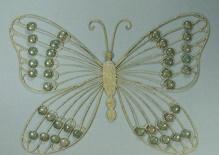 LP 16738 Motyl