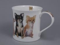 WESSEX Designer Dogs -Chihuahuas -porcelana