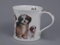 WESSEX Designer Dogs -Shih Tzus -porcelana