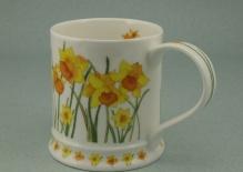 IONA Garden Flowers Daffodils -porcelana